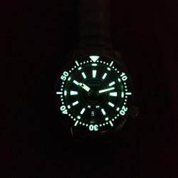 proxima PX1683 SBDX001 NH36 MOVEMENT Diver Automatic Wristwatch  day-date wheel
