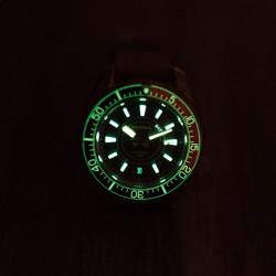 Proxima PX1684 Bronze SBDX001 NH36 Tuna Diver Watch Cusn8 Men Mechanical Watches 300M Waterproof Luminous Cusn8