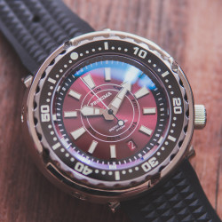 Proxima PX1682 NH36 Tuna Diver Automatic Wristwatch MarineMaster Sapphire insert Red Day-Date dial